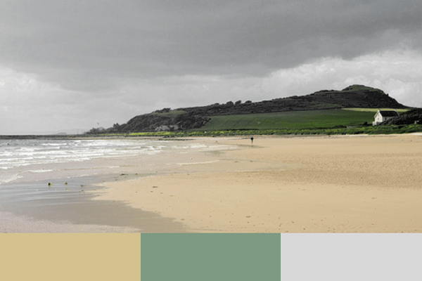 Image of Ayrshire coastline with Cumbrae Oysters Colour Palette highlighted
